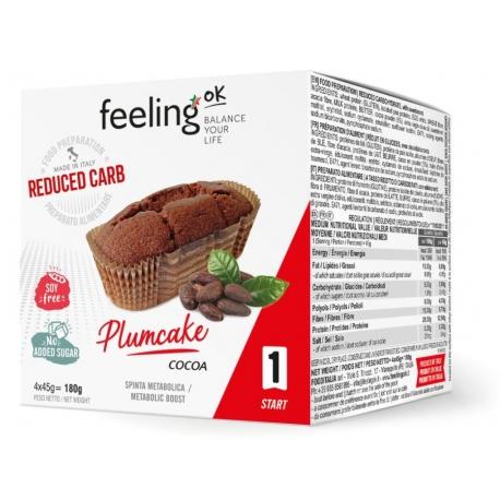 FeelingOK Low Carb Plumcake Cocoa
